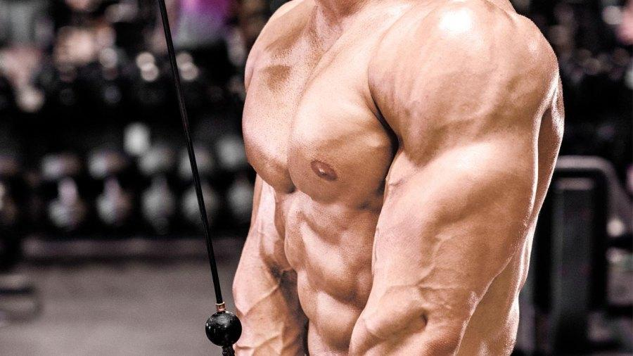 Exercises to Get Horseshoe Tricep