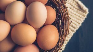 Egg Nutrition Facts: Calories, Protein and More